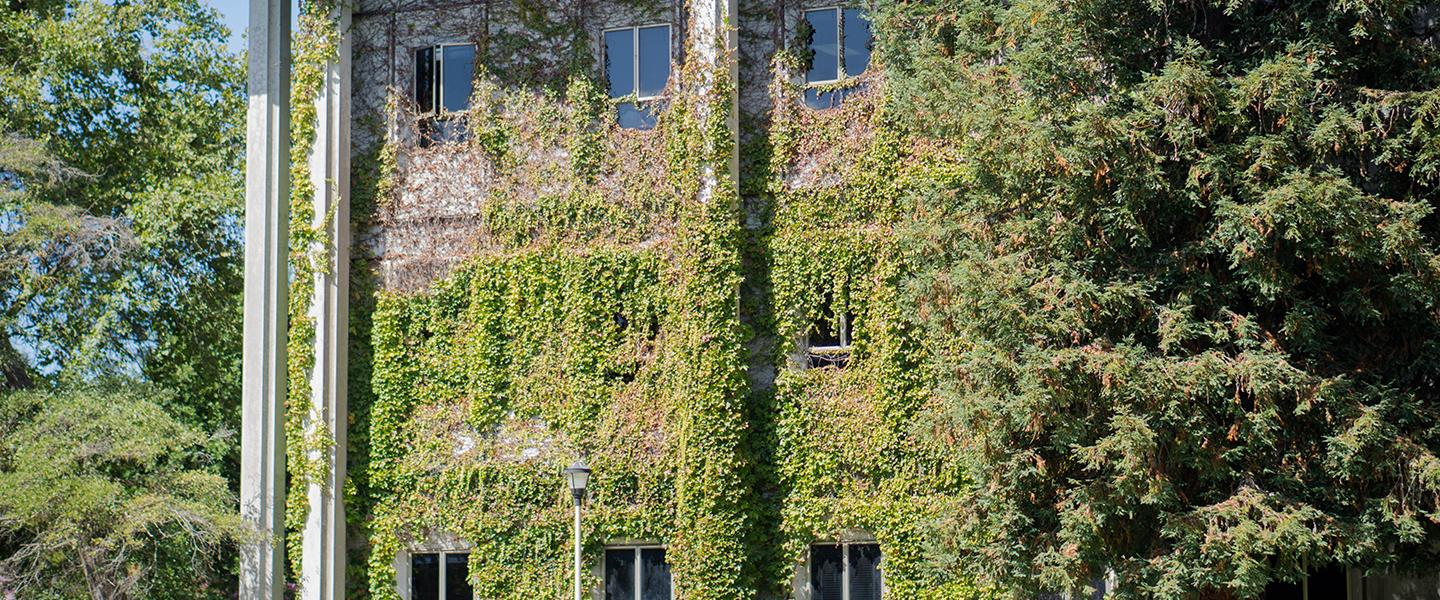 Stevenson Hall exterior covered in ivy